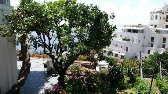 Casa Maresca : Garden and View