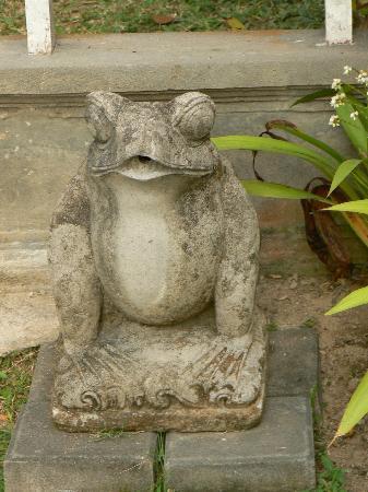 Besakih Beach Hotel: frog