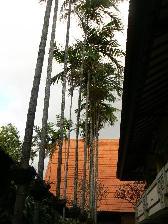 Besakih Beach Hotel: trees