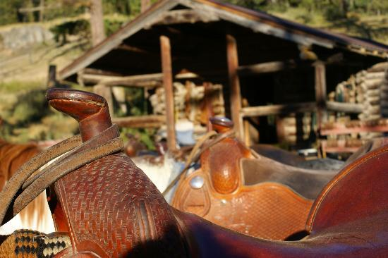 Western Pleasure Guest Ranch: Empty saddles
