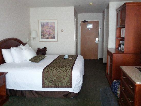 Best Western Plus Twin Falls Hotel: nice