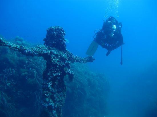 写真Dive Pros枚