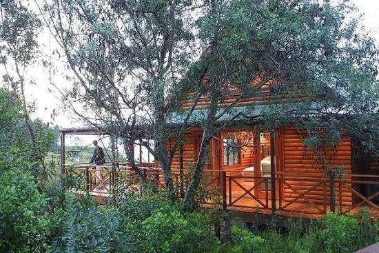 Storms River, South Africa: The B&B Chalets