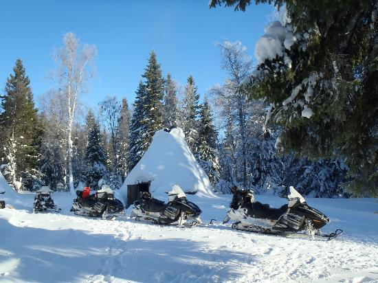 Lapponia Safaris - Day tours: Trip by snowmobiles to little Reindeer Camp