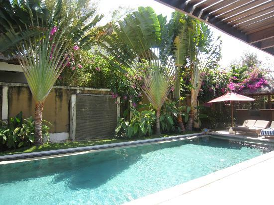 Villa Bugis: Pool
