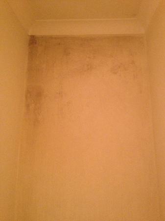 The West House : Mould on the en-suite shower room wall!