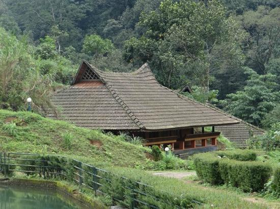 Rain Country Resorts, Lakkidi,Wayanad: Concrete Cottages