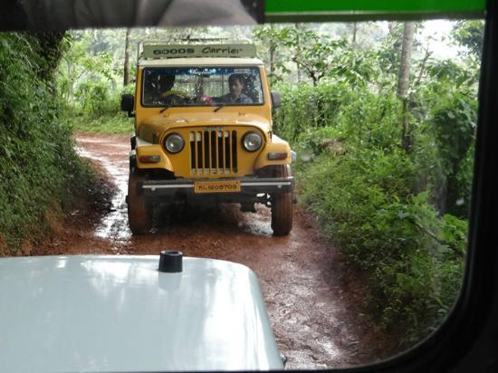 Rain Country Resorts, Lakkidi,Wayanad: This is what I was talking about, 1 jeep at a time on the road
