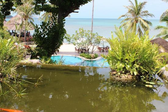 Nora Beach Resort and Spa: Pond, pool, beach and sea