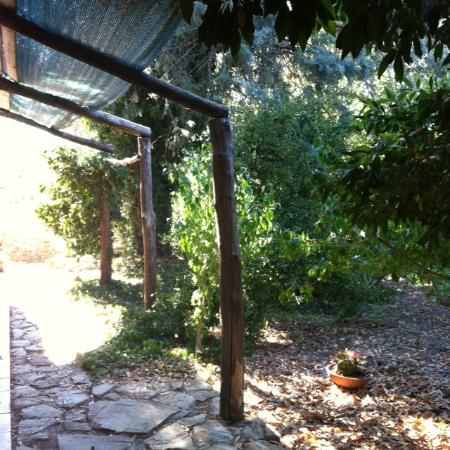 Agriturismo Capra Matilda: il patio