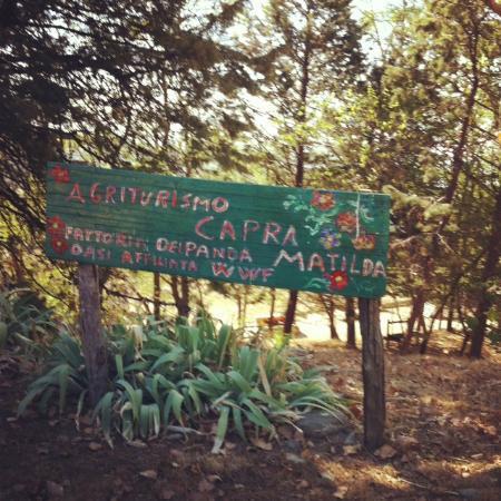 Agriturismo Capra Matilda: L'ingresso