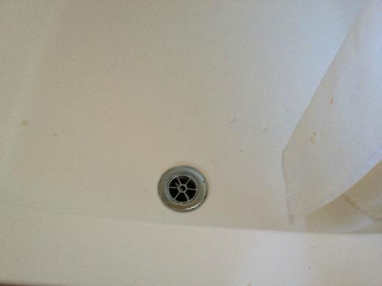 Olanda Guest House: Rusty shower curtain