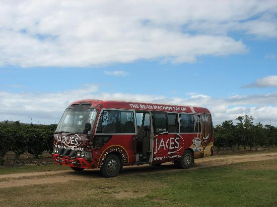 Jaques Coffee Plantation: Tour bus, tour itself costs $15.00