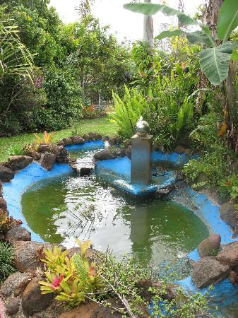 Jaques Coffee Plantation: Water feature at Jaques