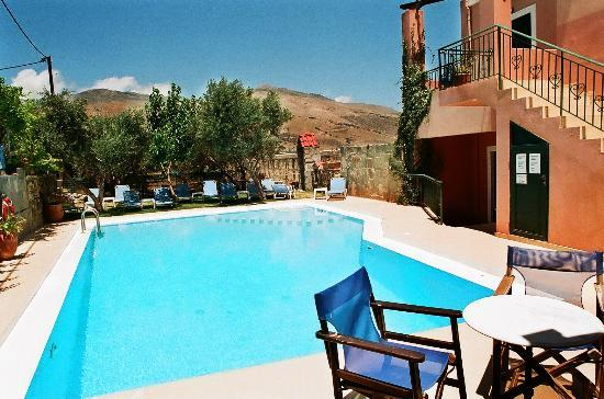 Olive Tree Apartments : Swimming pool
