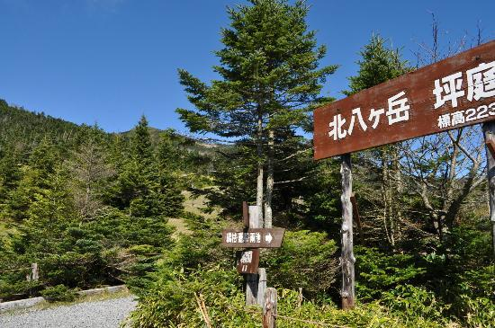 Chino, Japón: 北八ヶ岳坪庭