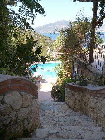 Hotel Fidanka: pool