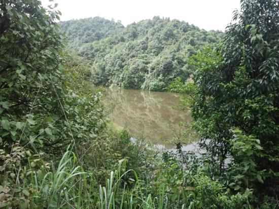 Shivapuri Nagarjun National Park : Day 2