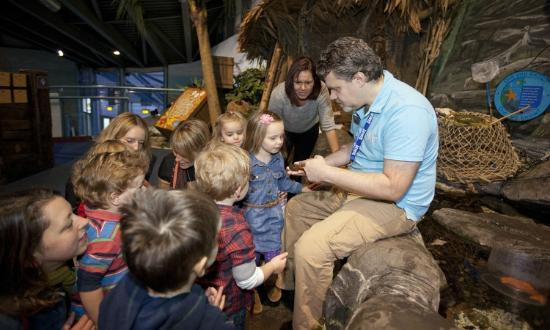 Interactive Rockpool experience - Picture of National Sea Life Centre ...