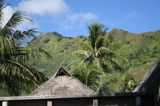 ‪منتجع Hilton Moorea Lagoon Resort & Spa: view of mountain from garden bungalow