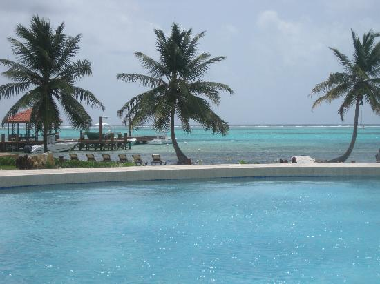 Grand Caribe Belize Resort and Condominiums: beautiful view from pool bar