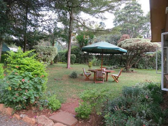 Sandavy Guest House - Kilimani: The front yard (where I saw monkeys!)