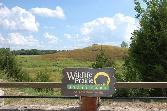 Wildlife Prairie Park: Peaceful area
