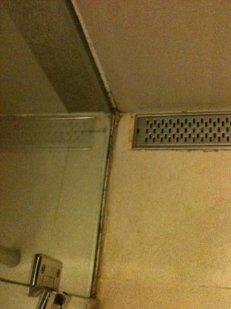 Century Park Hotel: unsightly mould/grime in the shower enclosure gutters