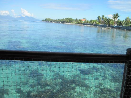 Le Meridien Tahiti: Amazing