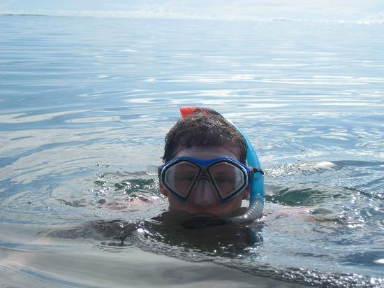 Le Meridien Tahiti: Snorkel stuff around the beach