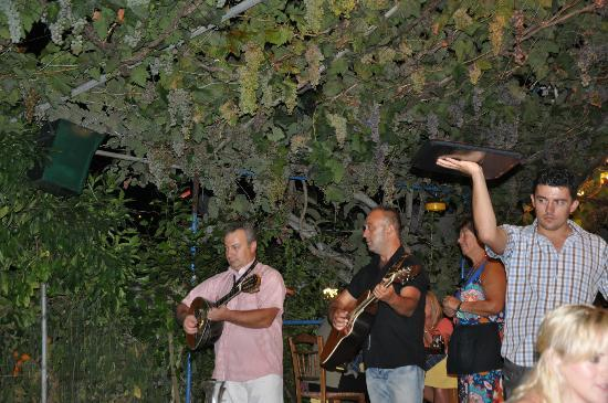 Sebastian's Family Taverna & Accommodation: Look at the grapes!
