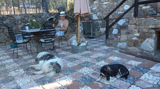 Molino Rio Alajar: Lazy afternoons