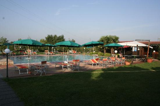 Agriturismo Podere Saliciaia : Relaxing by the pool
