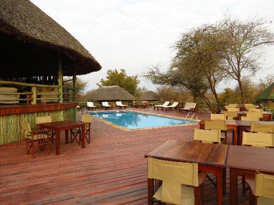 Tarangire River Camp: pool