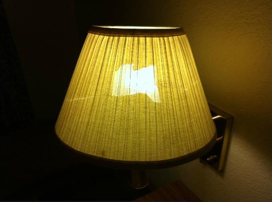Econo Lodge Monterey Fairgrounds: Abused lampshade