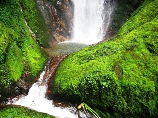 Talamanca Reserve: Cascada El Salto