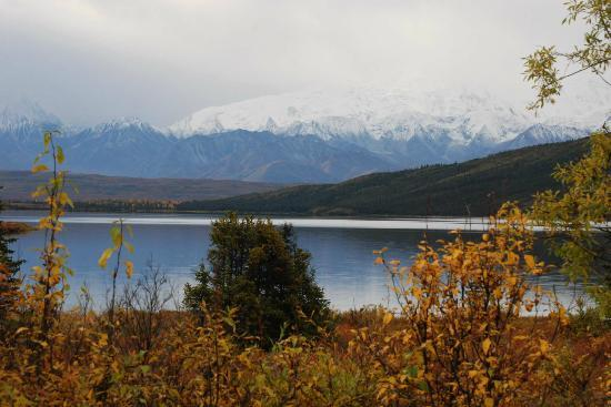 Denali Backcountry Lodge: Wonder Lake and view of the mountains