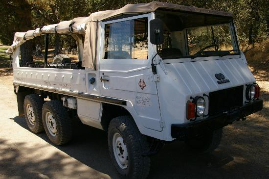 Gundlach Bundschu Winery: The Mighty Pinzgauer