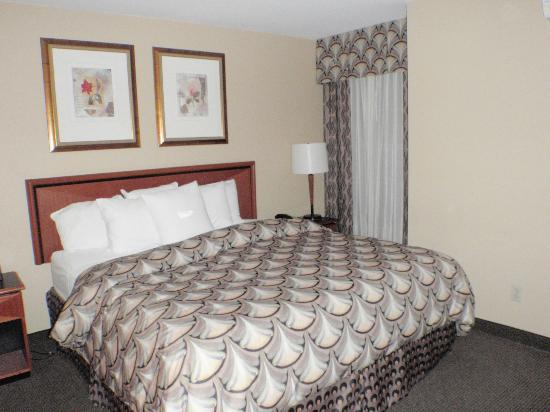 Homewood Suites by Hilton San Jose Airport-Silicon Valley: King Size Beds