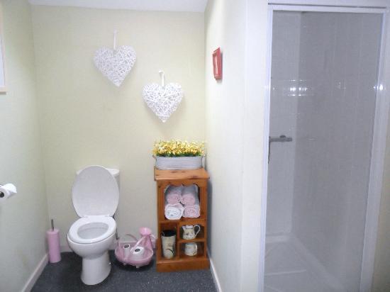 Blackbrook Lodge Caravan & Camp Site: Love shack bathroom