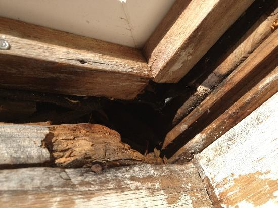Island Inn: Rotted window frames abound
