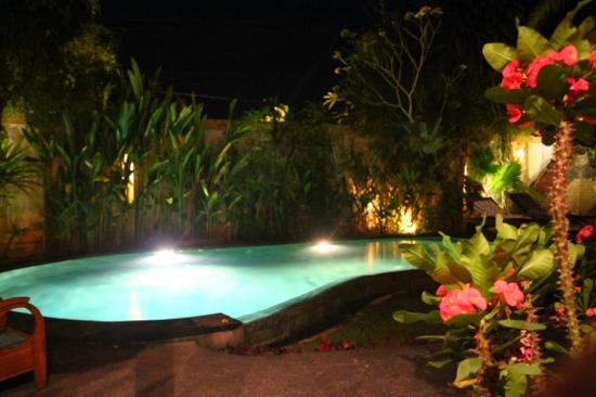 Junjungan Ubud Hotel and Spa: piscine