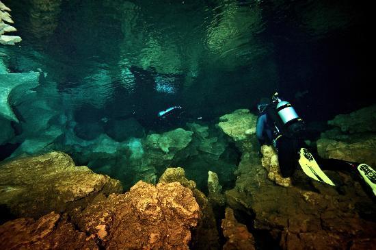 Sarda Divers - Dive Center: Grotta Fantasme