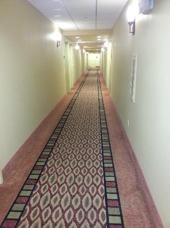 Hampton Inn Visalia: Corredor térreo