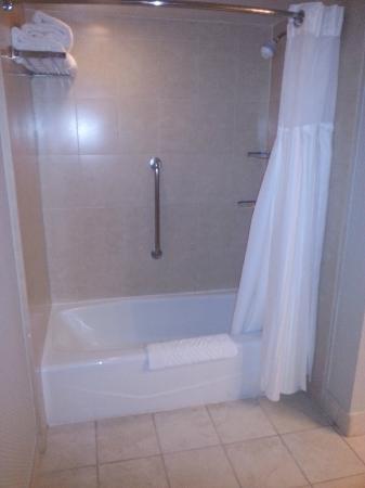 Hilton San Diego/Del Mar: Banheiro 192