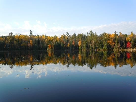 Fenske Lake Resort Cabins: View from the private dock - Jackpine Cabin