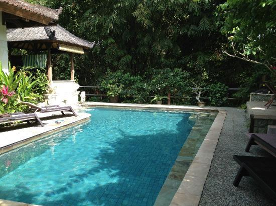 LadyBamboo Villa: Almost Private Pool
