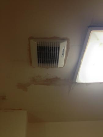 St. Mellons Hotel: damp