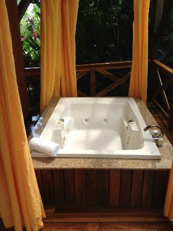 Nayara Resort Spa & Gardens 사진