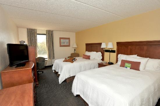Hampton Inn Daytona/Ormond Beach: King Room